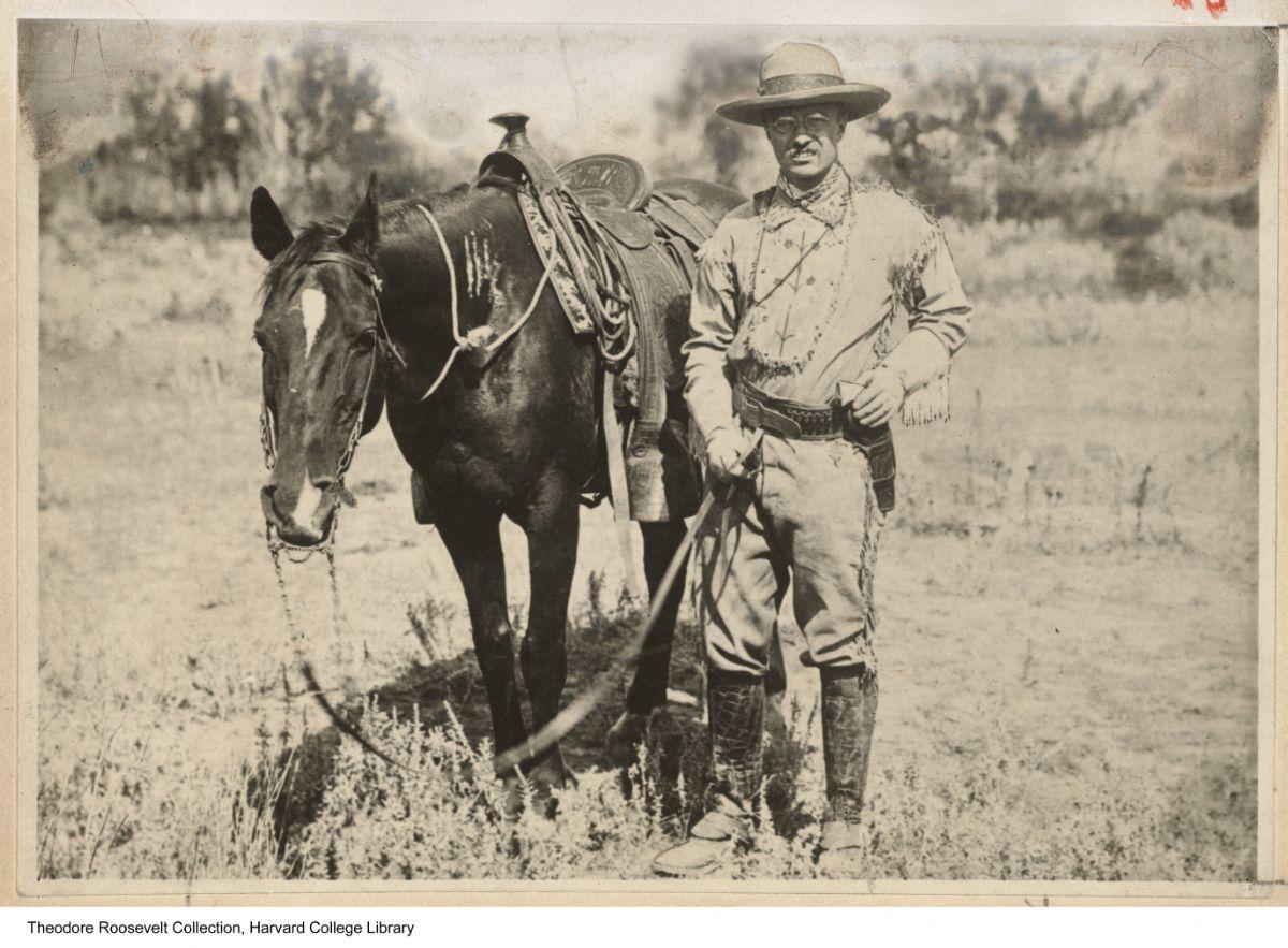Roosevelt-Horse